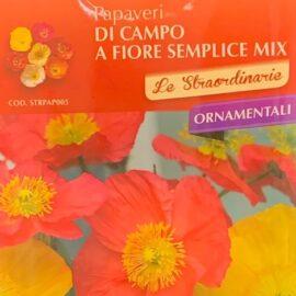 Papaveri di Campo a Fiore Semplice mix colori Perenne